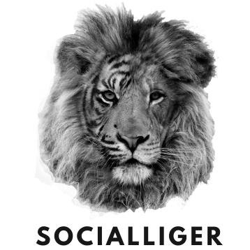 Socialliger